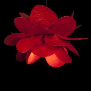 rosa roja techo negro